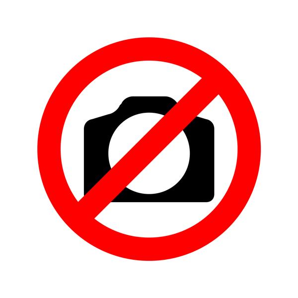 Piden en cabildo formalizar restricción de cabalgatas y reglamentación contra el ruido