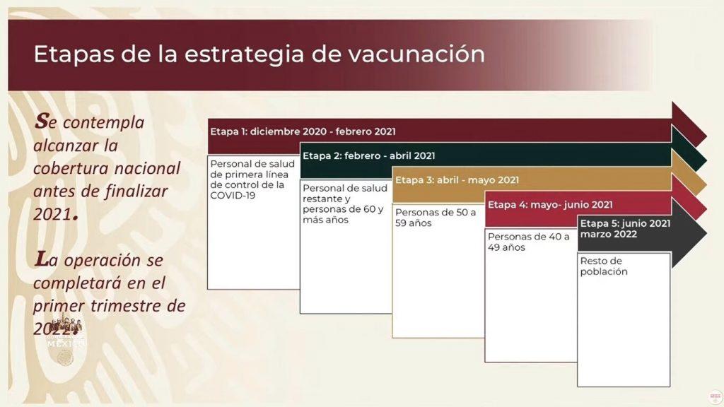 Etapas de vacunación COVID-19