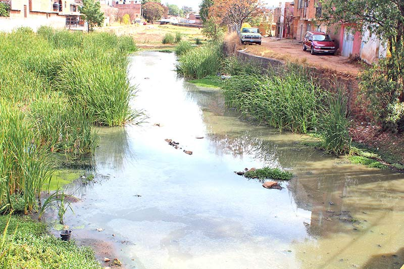 Corre río de aguas negras por la ciudad